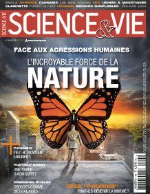 Science & vie 1165, octobre 2014