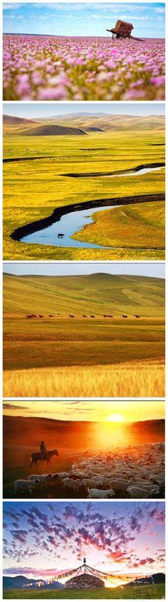 The Hulunbeir Grassland
