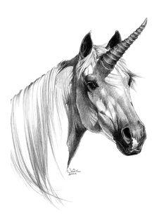 Unicorn / 2000 (Julie Bell)