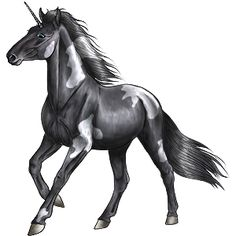 Night Painted 99, Unicorn Appaloosa Black Leopard #47485 - Howrse US