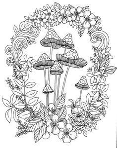 Mushroom Toadstools : The can´t sleep colouring book