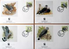 portugal  1991.  wwf. bird.