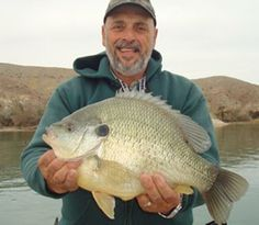 An Arizona man fishing Lake Havasu on Feb. 16, 2014, caught a 5.78-pound redear sunfish that could eclipse the current world record.