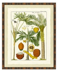 fun palm prints- for over the sofa?