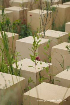 Limestone columns in James Basson's M&G garden at RHS Chelsea Chelsea 2017, Basson, Shows 2017, Drought Tolerant Plants, Chelsea Flower Show, Covent Garden, Garden S, Water Plants, Outdoor Plants