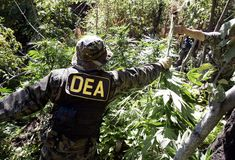 Washington, DC – Arecently revealed documentindicates that top federal health officials have given the Drug Enforcement Agency (DEA) a recommendation to reschedule marijuana under the federal Con…