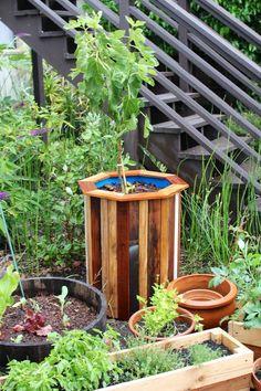 Schaut euch mal an, woraus dieser hübsche Blumentopf gebaut wurde. Das glaubt ihr nie. ;) #DIY #Pflanztopf