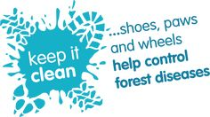 keep it clean... clean your shoes, paws and wheels to help control forest diseases