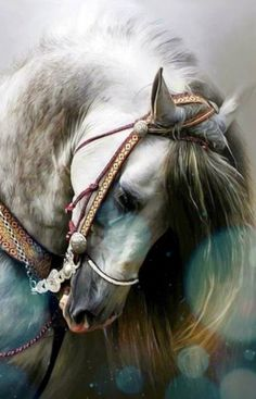 Animals Discover Unicorn in the Forest Cute Horses, Pretty Horses, Horse Love, Most Beautiful Horses, Animals Beautiful, Cute Animals, Beautiful Beautiful, Horse Photos, Horse Pictures