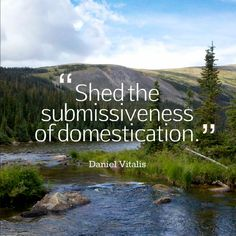 Shed the submissiveness of domestication. ~Daniel Vitalis #rewild #teamsurthrival