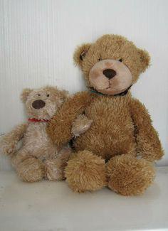 Two teddy friends.