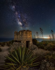 Starry bunker - Photography by Ivan Pedretti www.thewildlifemoments.com WWII ...