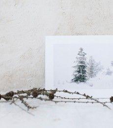 LuciaMphoto15_WinterWhiteness_095