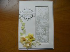Card using Sue Wilson dies and stamps