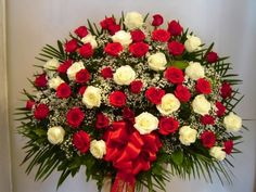 Red and White Rose's