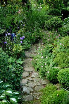 75 Stunning Small Cottage Garden Ideas for Backyard Inspiration - DoitDecor Small Cottage Garden Ideas, Cottage Garden Plants, Cacti Garden, Garden Living, Landscape Design, Garden Design, Woodland Garden, Plantar, Tropical Garden
