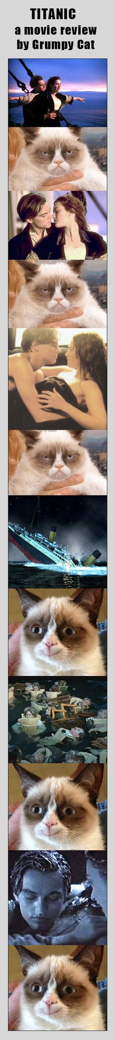 Awww I love Titanic, but so funny :P Grumpy Cat Quotes, Grumpy Cat Humor, Cat Memes, Funny Memes, Grumpy Cats, Titanic Funny, Titanic Movie, Animals And Pets, Funny Animals