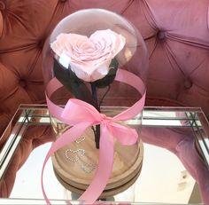 Ribbon, Cake, Flowers, Fashion, Tape, Moda, Fashion Styles, Band, Kuchen