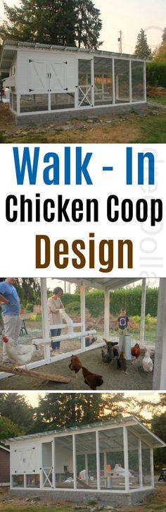 Building a Chicken Coop Chicken Coop Ideas, Walk in Chicken Coops, Chicken coop Plans, Elegant Chicken Coops, High End Chicken Coops, Traditional Chicken Coop Designs Building a chicken coop does not have to be tricky nor does it have to set you back a ton of scratch.