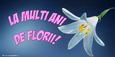 La multi ani de Florii! Places To Visit, Pastel, Neon Signs, Pictures, Cake, Crayon Art, Melting Crayons