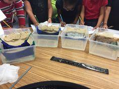 weathering and erosion stem activity