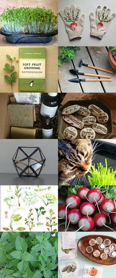 Green garden #etsy collection with our Gardener's Gift set  by Cha Cha Louise on Etsy--Pinned with TreasuryPin.com