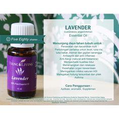 Saya menjual Young Living - Lavender 5ml seharga Rp200.000. Dapatkan produk ini hanya di Shopee! http://shopee.co.id/moncha82/4264899 #ShopeeID