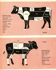 Looking : Beef & Veal