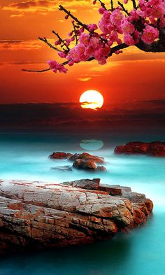 amazing sea sunset