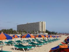 """Lageplan Olivia Beach App."" Bild Hotel Riu Oliva Beach & Village Resort in Corralejo • Fuerteventura, Spanien"