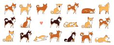 A lot of shibas by olliewhen.deviantart.com on @DeviantArt Really cute