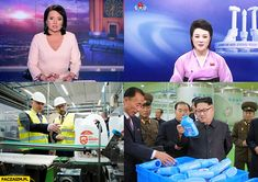 Korea, Humor, Memes, Humour, Meme, Funny Photos, Funny Humor, Comedy, Korean