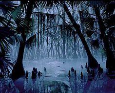 voodoo swamp - Google Search