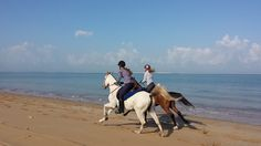 Dakota and Nickolai having a race. Dakota won!  #horses #beach #UAE #RAK #adventure #race #horseback