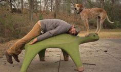 Hunden Maddie är ute och balanserar på turne i USA http://blish.se/844ab37967 #hundar #vildhundar #böcker
