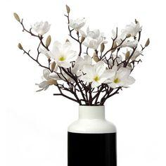 Sauser Magnolia - Set of 3 (99 CAD) ❤ liked on Polyvore featuring home, home decor, floral decor, flowers, plants, fillers, decor, white floral arrangement, magnolia flower arrangement and floral arrangement
