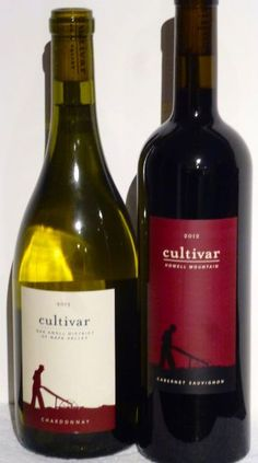 SASSYs taste Napa Valley Cultivar wines   Review From The House 2012 Howell Mountain Cabernet  Sauvignon and 2013 Oak Knoll Chardonnay