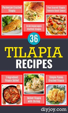 Tilapia Recipes - Best Recipe Ideas for Baked and Sauteed Tilapia Fish - Dinner Lunch Snacks and Appetizers - Healthy Salads Pastas and Easy Weeknight Dinners Lunches for Work - How to Make Tilapia Tilapia Recipes, Fish Recipes, Seafood Recipes, Cooking Recipes, Pan Seared Tilapia, Grilled Tilapia, Healthy Appetizers, Healthy Salads, Healthy Recipes