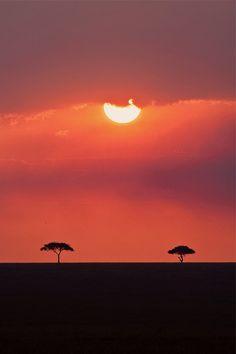 Just before sunset, on the Masai Mara, Kenya