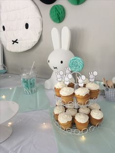 Miles miffy first birthday party!