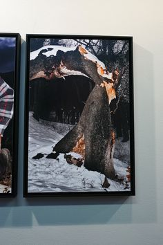 "Jesús Monterde Exposición ""Nemini Parco"" Proyecto ""Lanzadera"" CentroCentro Cibeles de Madrid. #Fotografía #Arterecord 2015 https://twitter.com/arterecord"