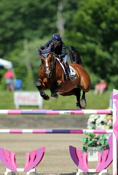 PIN great images--use keywords--hits, horses, hunter jumper, saugerties,  margie engle, ride, horseback, etc.   PINTEREST now SECOND to get picked up in Google search results.