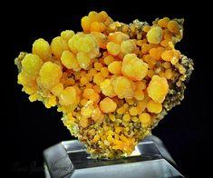 Mimétite   Barras-Gautier-Min. Minions, True Colors, Minerals, Collections, Crystals, The Minions, Minions Love, Minion Stuff