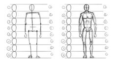 how to draw human body proportions - Recherche Google