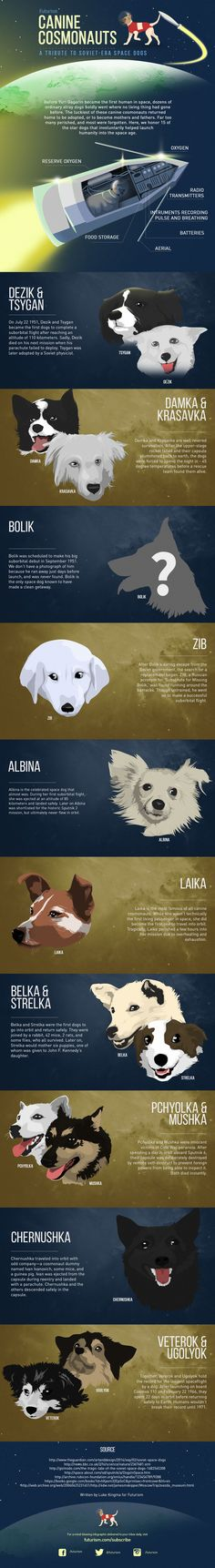 Meet 15 canine cosmonauts who involuntarily launched mankind into the space age during the 1950s.