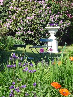 Hunters Hotel-Historic Country House Hotel in the Garden of Ireland Wicklow. Mums The Word, Country House Hotels, Formal Gardens, Backyard Retreat, Blue Books, Country Estate, Ireland, The Neighbourhood, Country Roads
