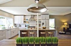 17 Nature Wheatgrass Decor Ideas