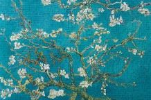 Almond Blossom art print poster transferred to canvas
