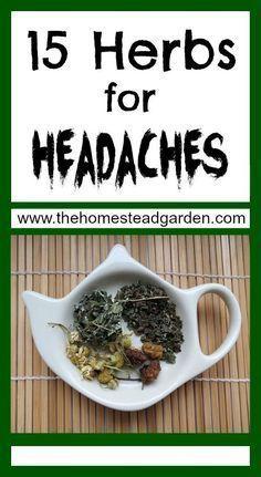 """The Natural Way.. """"15 Herbs for Headaches"""" #Lavender #Rosemary #HeadacheHelps"""