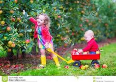 Image result for Playing in Garden